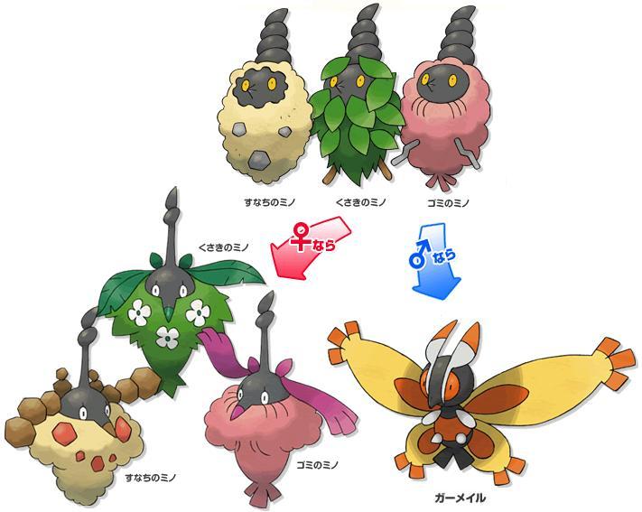 Volution wattouat pok mon - Pokemon wattouat ...
